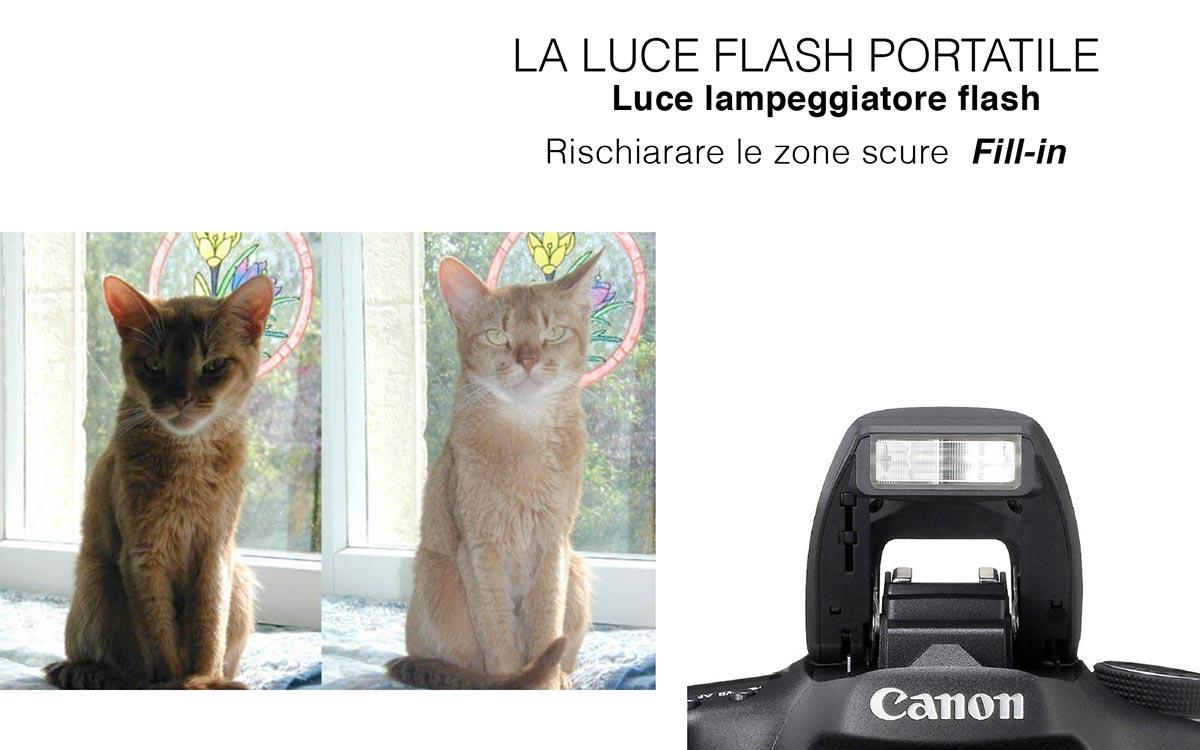 Federico_Balmas_Fotografia_BlogCWD_FlashSlitta_Torino_12_0